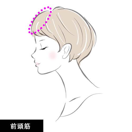 頭皮マッサージ 前頭筋の説明