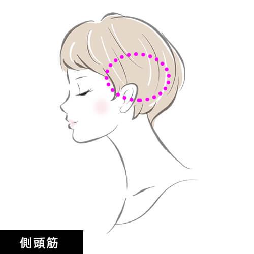 頭皮マッサージ 側頭筋の説明