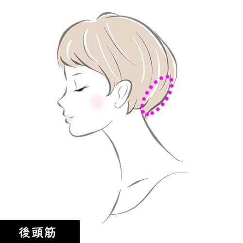 頭皮マッサージ 後頭筋の説明