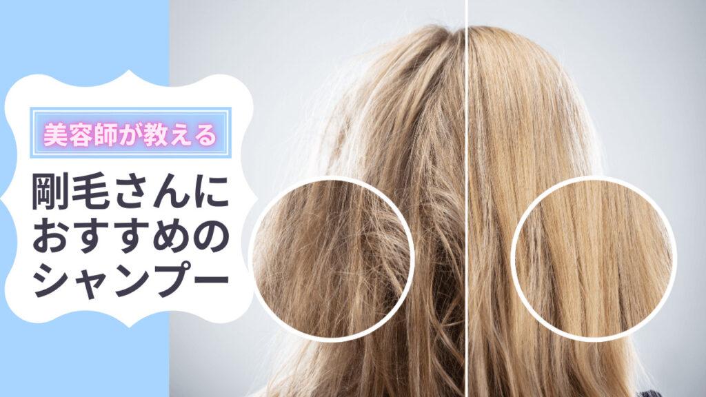 剛毛シャンプー コンテンツ アイキャッチ画像1